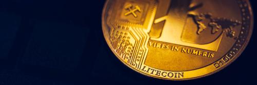 litecoins kaufen